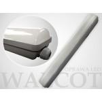 20W LED šviestuvas 600mm 4500K IP65 1800LM Walcot
