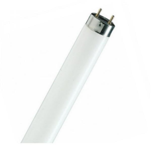 18W/865 NL-T8 lempa lium.G13 Radium